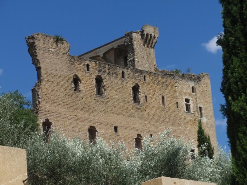 Le château de Chateauneuf-du-Pape en Provence
