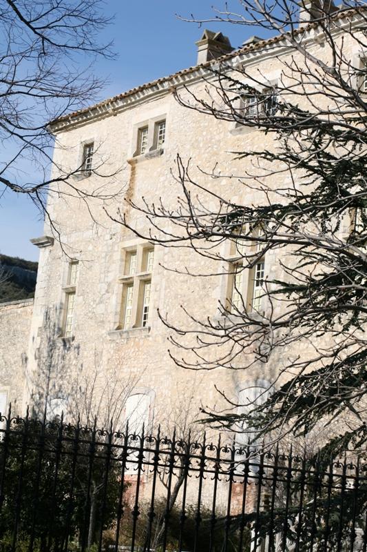 Le chateau de Javon en Provence