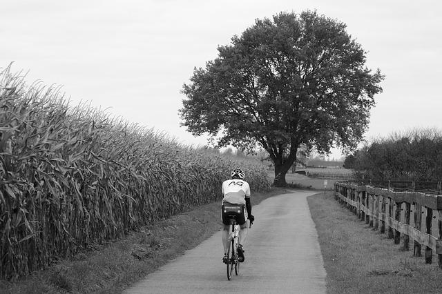 La Provence à Bicyclette