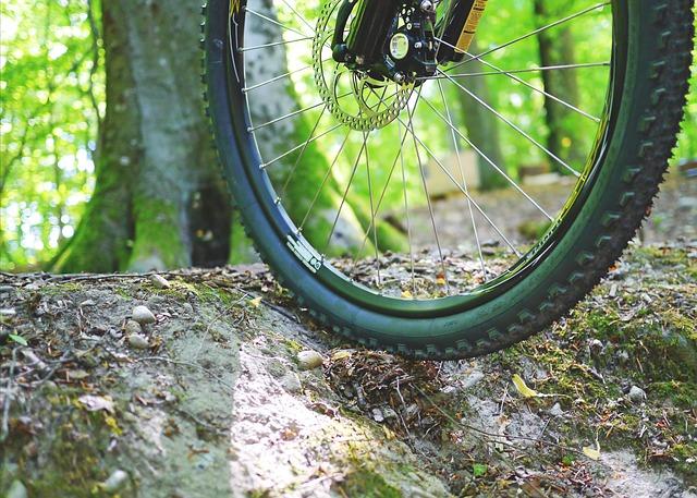 Mountain bike Luberon - vtt