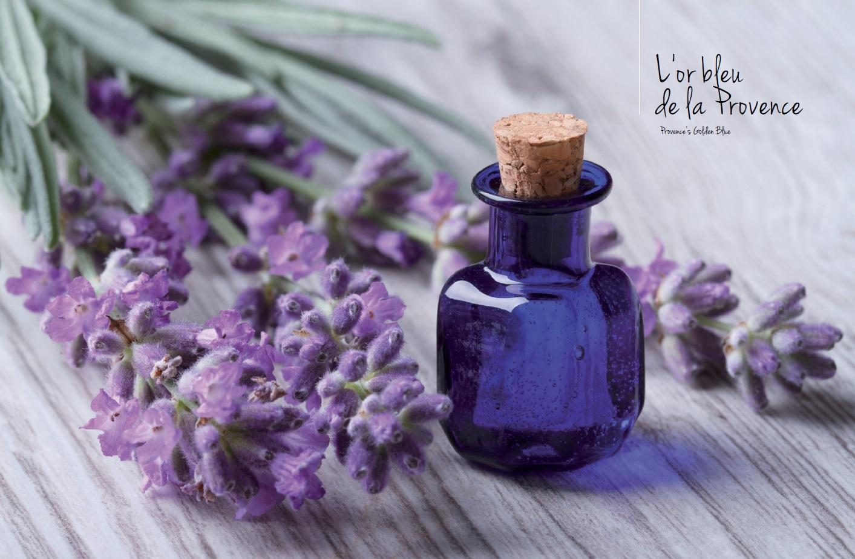 La lavande produit de Provence