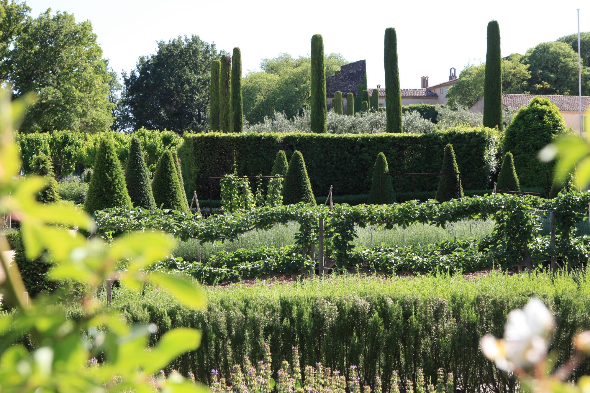Plantations du jardin du Château de Val Joanis Provence