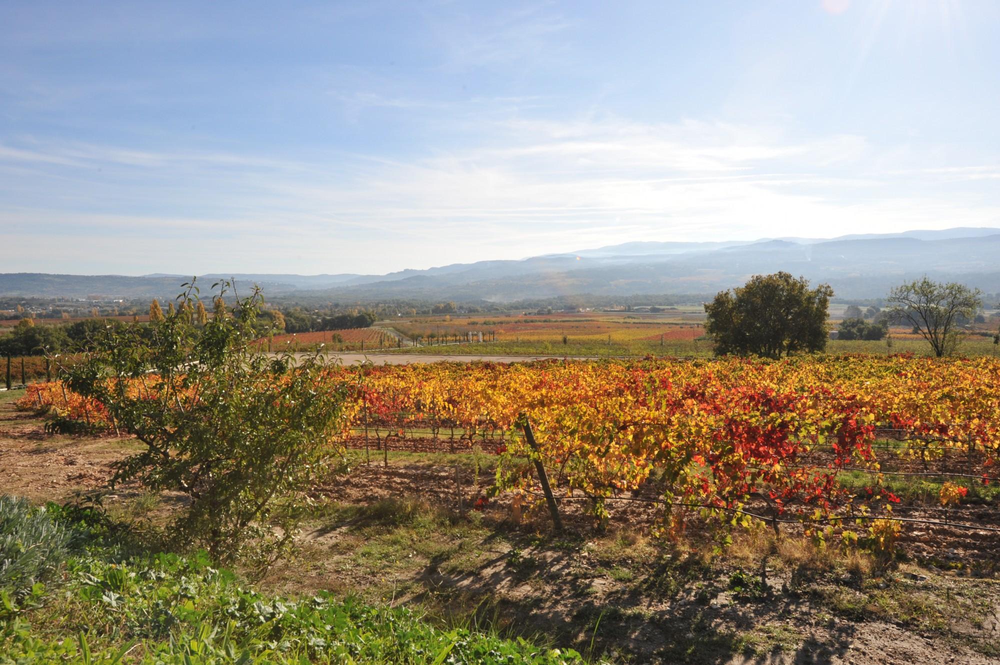 Le Luberon et son agriculture