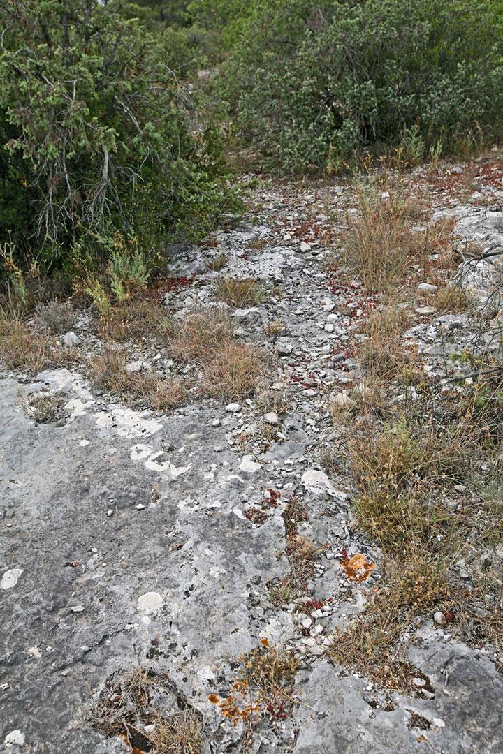 Gordes, des sols datant du Jurassique supérieur composés de calcaires à faciès urgonien et de calcaires argileux