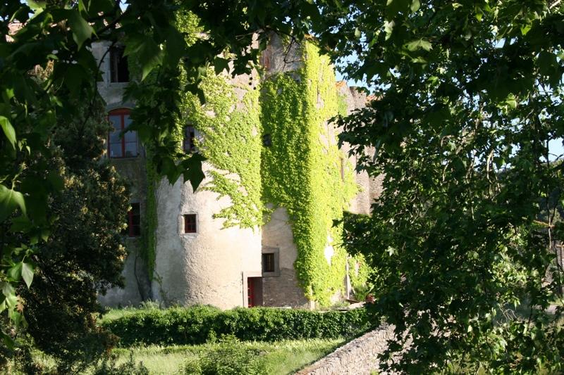 Chateau du XIIeme siecle avec vignoble