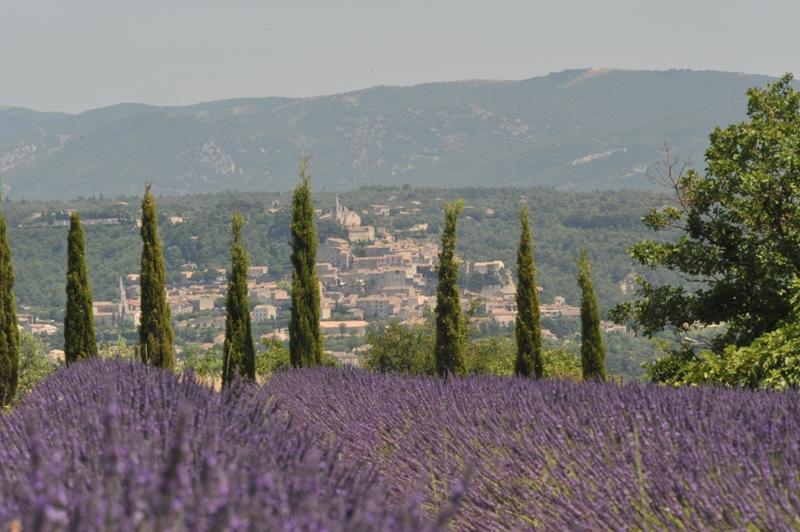 Luberon, bastide contemporaine, vues superbes  sur les lavandes et le village de Bonnieux