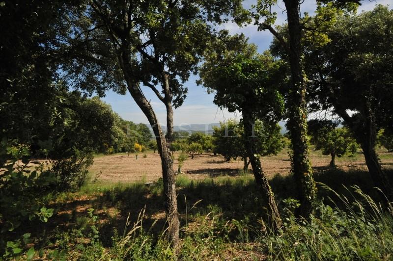 Face au Luberon, au calme et en position dominante,  très beau terrain constructible de 5880 m²