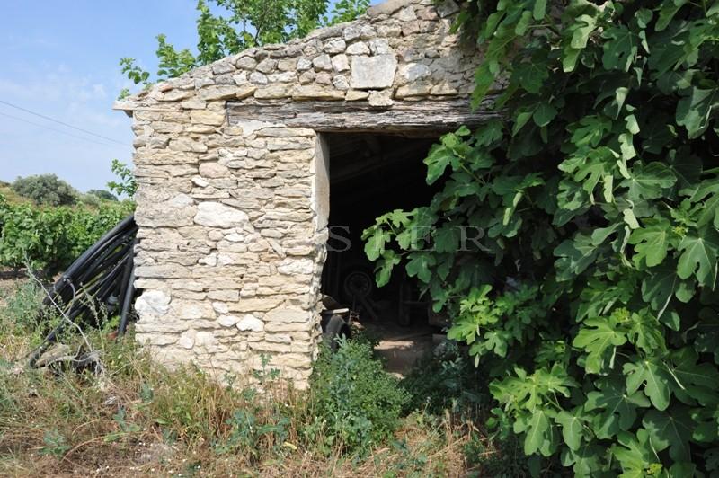 Domaine viticole  en Luberon sur plus de 30 hectares