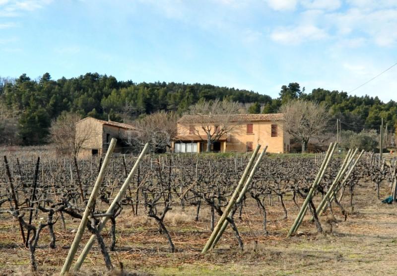 Mas ancien à restaurer avec annexe face au Luberon au millieux des vignes