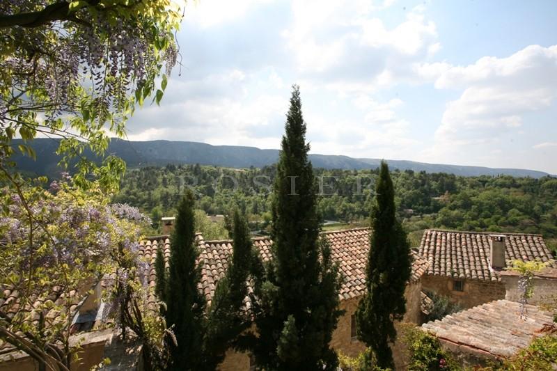 Luberon, à vendre,  très originale maison de village, partiellement troglodyte, rénovée, beaucoup de charme, avec jardin