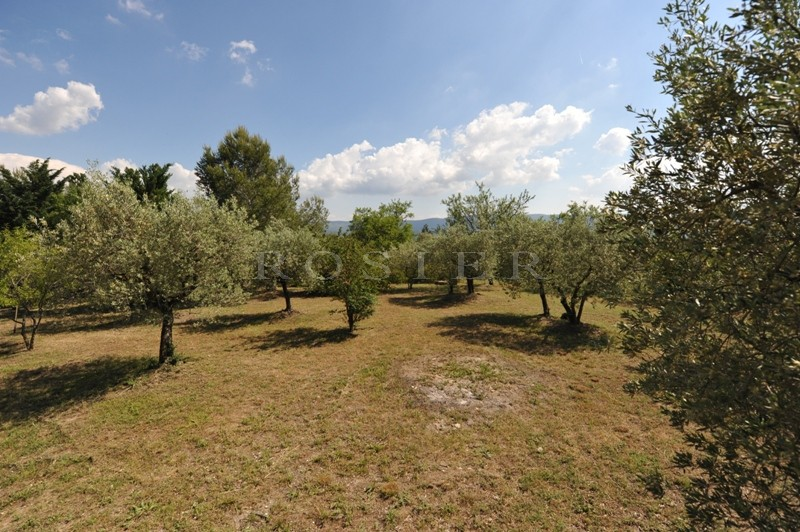 Au pied du village classé de Gordes,  terrain à batîr au milieu des oliviers et offrant de belles vues sur le Luberon