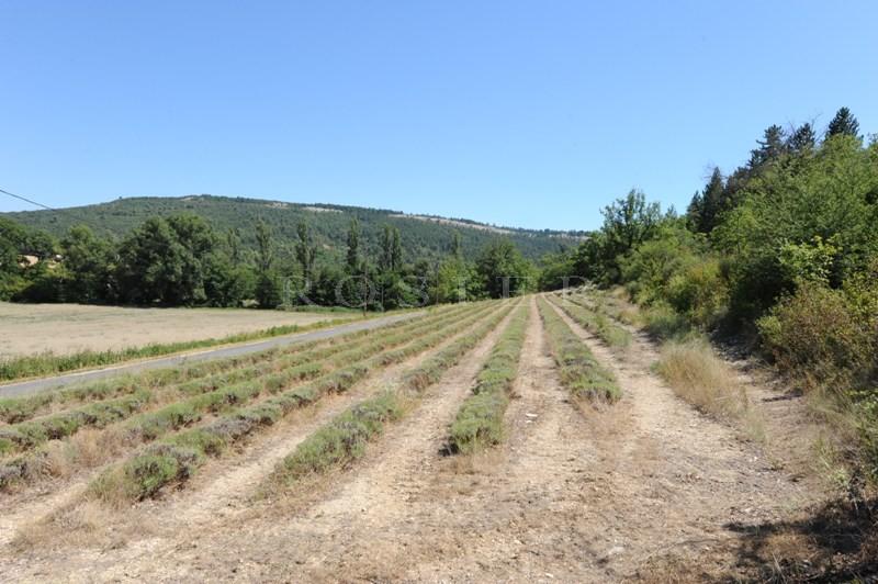 Sur la partie sud des Monts de Vaucluse, face au massif du Luberon et à quelques minutes d'un agréable village de Provence, maison ancienne à rénover