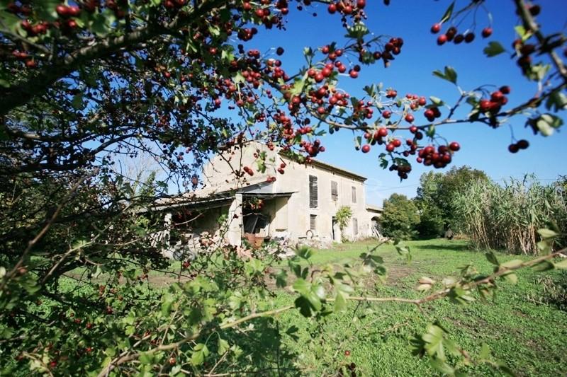 Luberon, en campagne, mas à restaurer, sur environ 5.000 m² de terrain