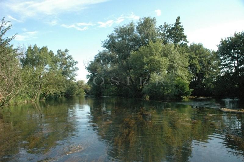 A vendre en Pays des Sorgues,  au bord de la rivière, bastide provençale rénovée,  dépendances, piscine sur 6 hectares de parc
