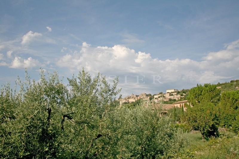 A vendre en Luberon,  Gordes, au milieu des oliviers,   charmante  maison en pierres, de plain-pied à rafraîchir.