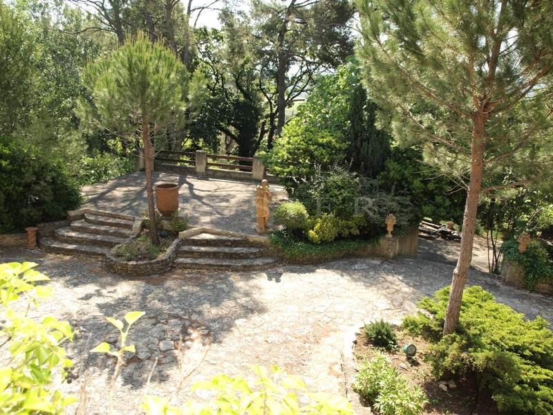 Face au Mont Ventoux,  à vendre, maison très spacieuse de 400 m² dans un écrin de verdure, au calme