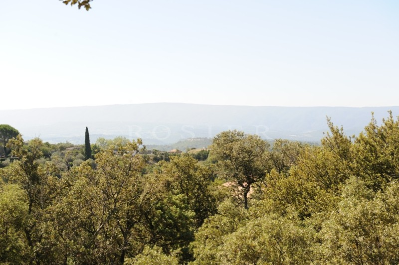 A Gordes, en vente,  viager occupé, authentique mazet provençal avec jardin