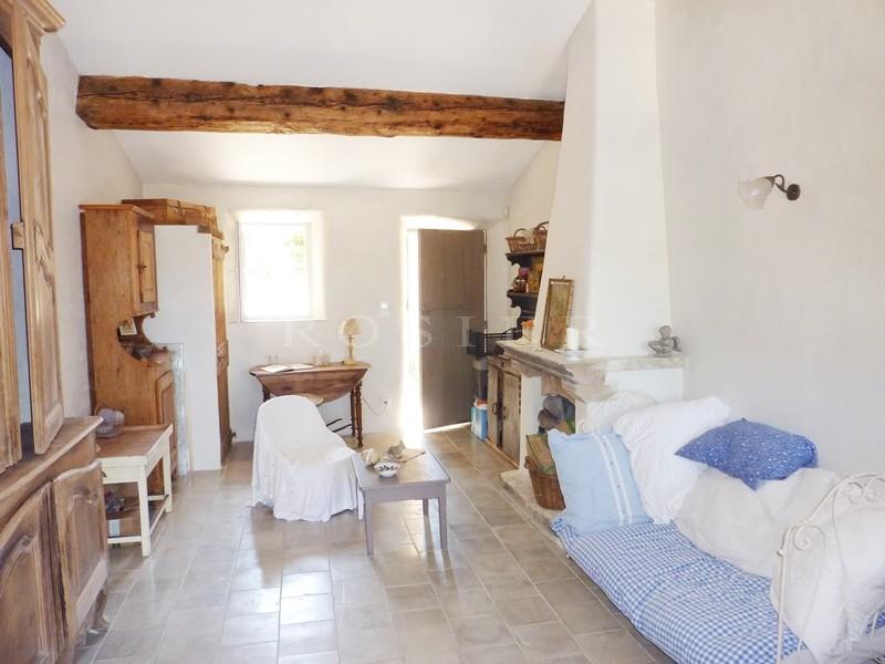 A vendre en Luberon,  maison de hameau en pierres avec maison d'amis, grand jardin et piscine