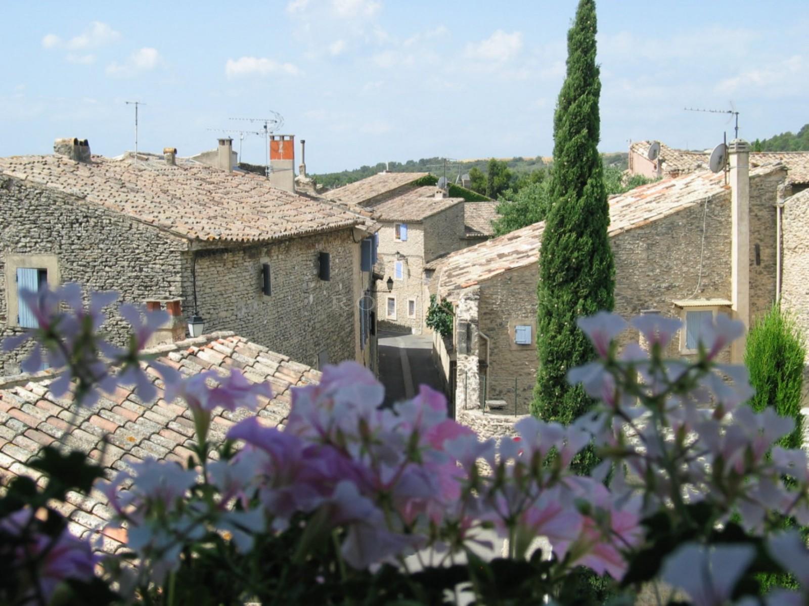 Maison de village avec cour et bassin à vendre en Luberon