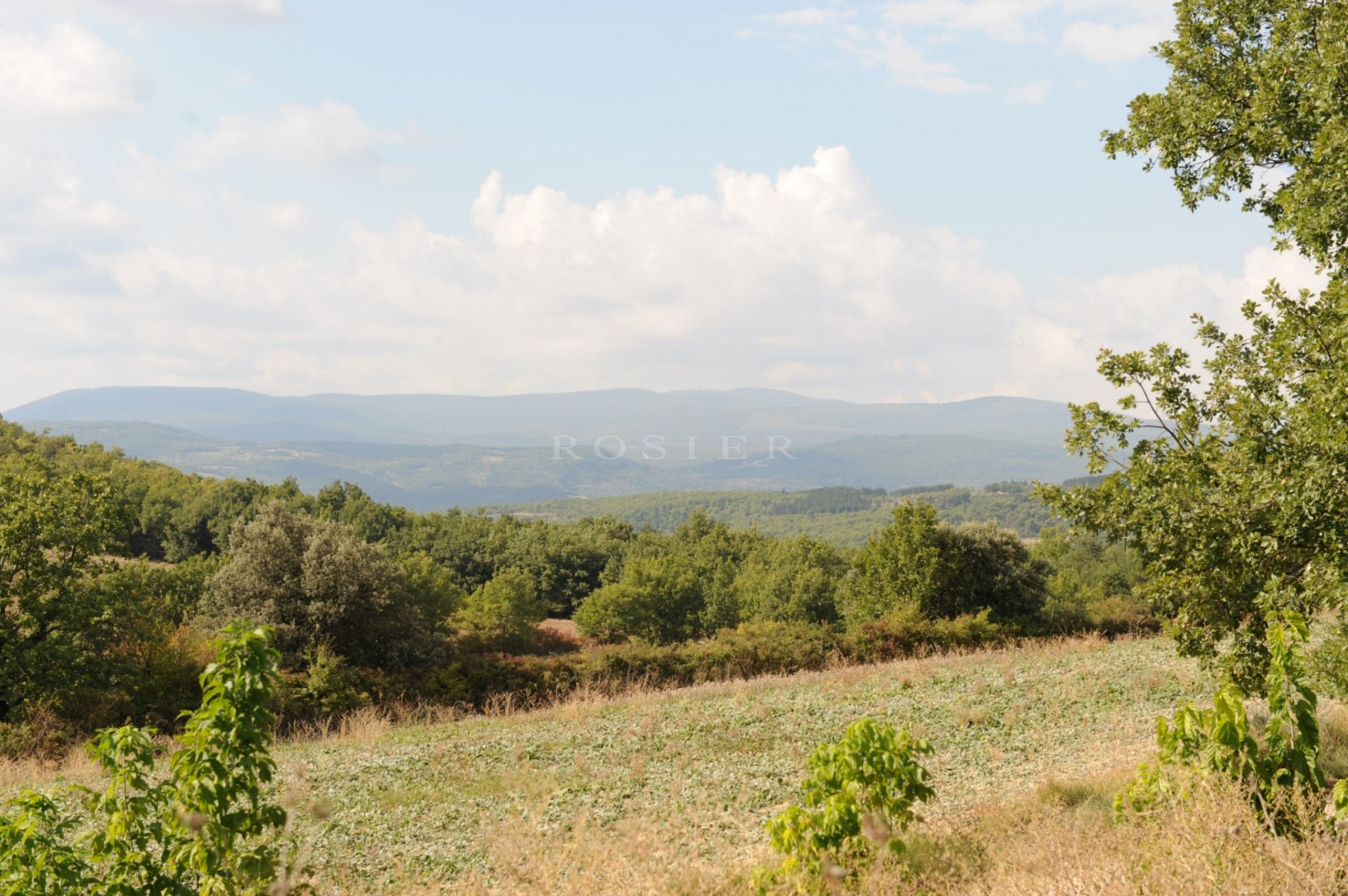 Avec 58 hectares au coeur du Luberon, authentique mas à rafraichir avec dépendances et piscine