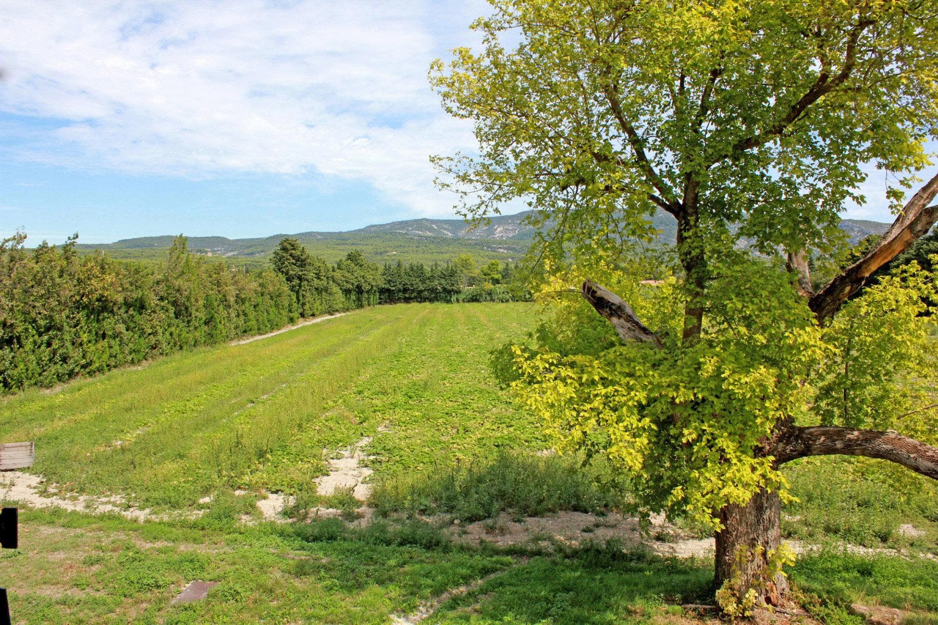 Dans les Monts de Vaucluse, en bord de Sorgue, authentique mas à rénover