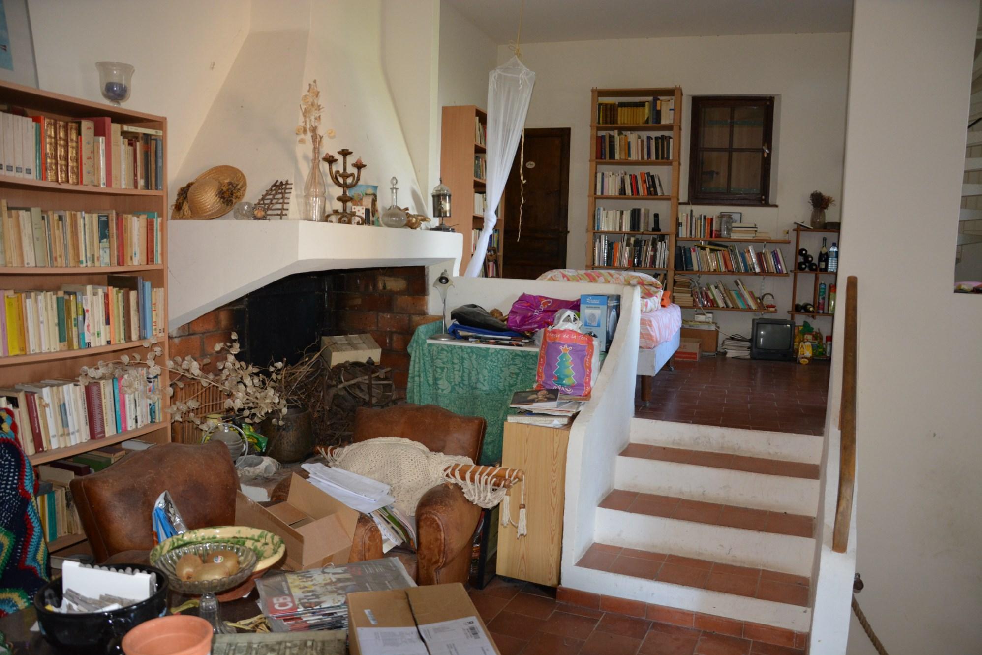 Un salon avec cheminée de cette maison en viager