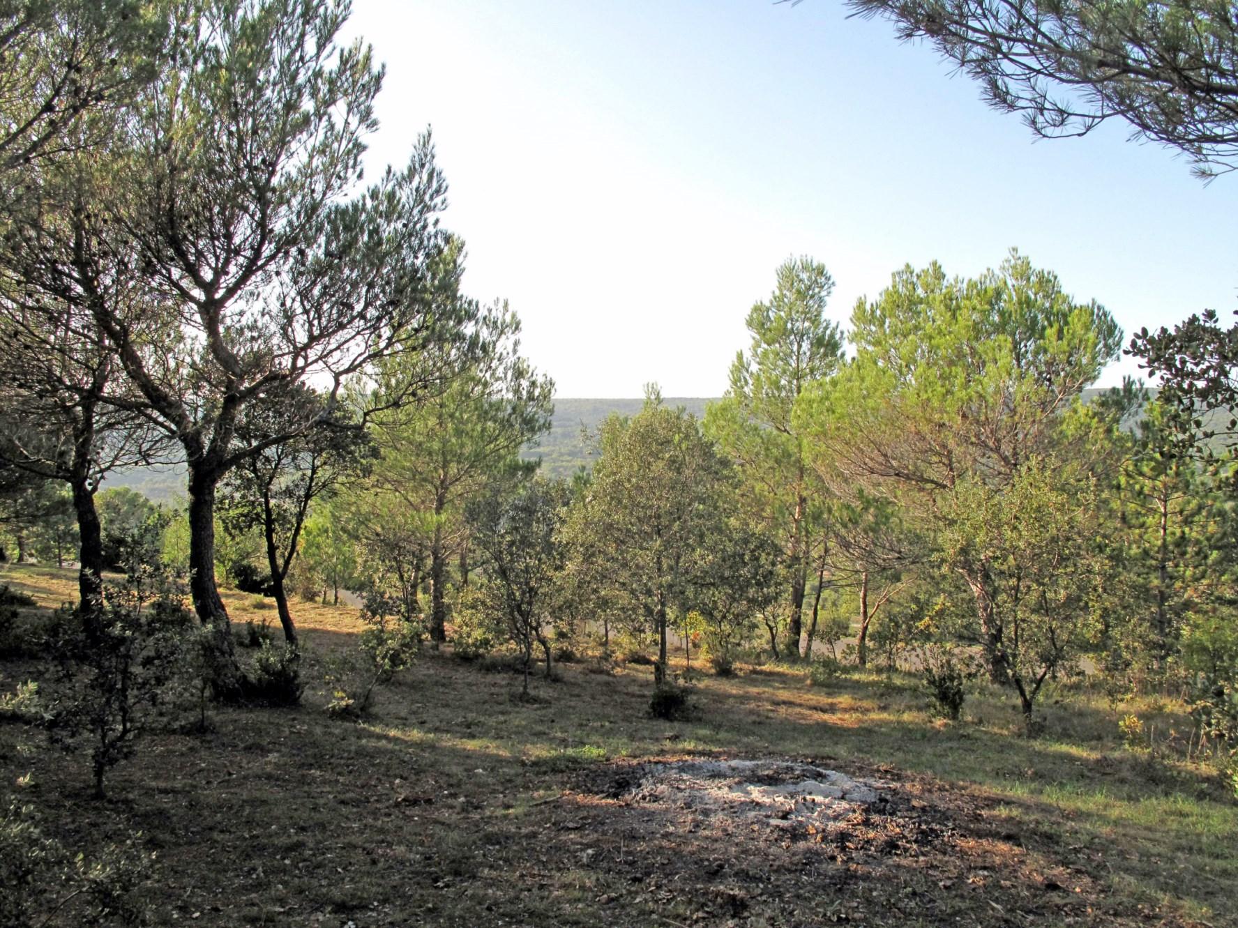 Beau terrain à vendre en Provence