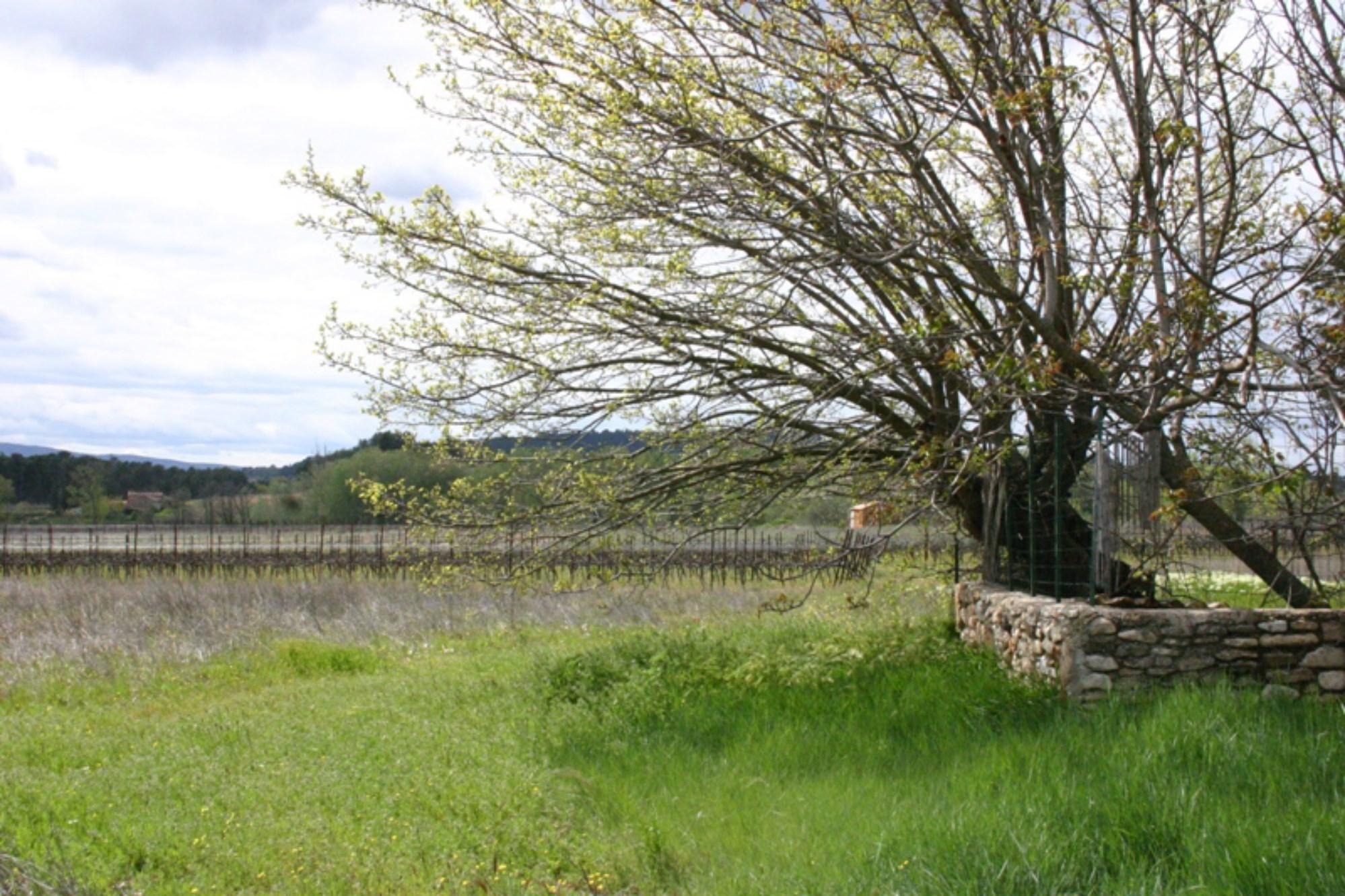 Au coeur de la vallée du Luberon, à vendre, ancienne ferme dans son jus à rénover