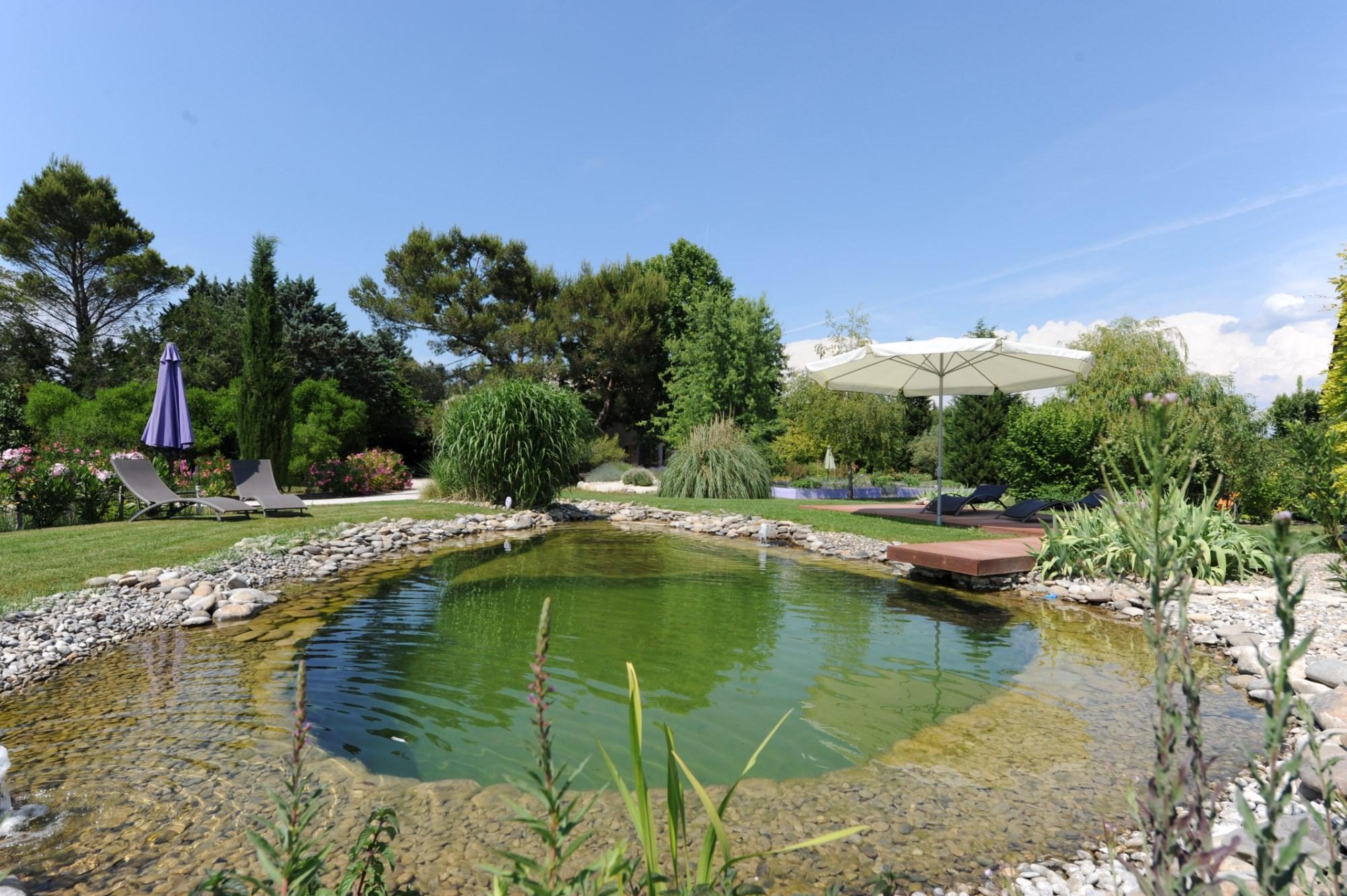 Mas ancien restauré avec piscine bio à vendre