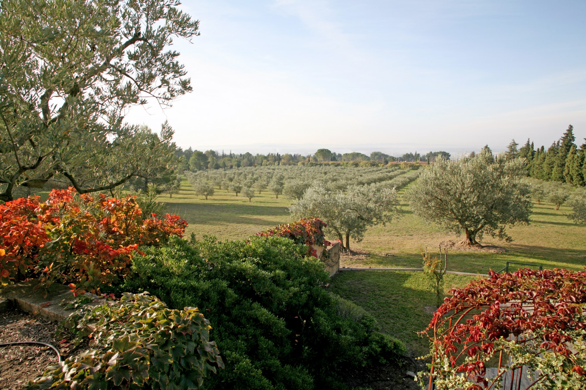 Belle propriété sur plus de 7 hectares avec vue en Provence