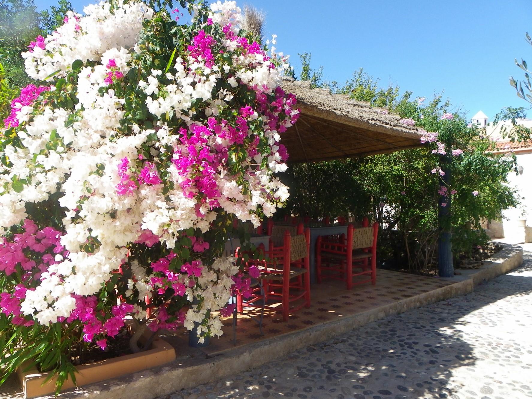 Belle propriété à vendre au Maroc par ROSIER