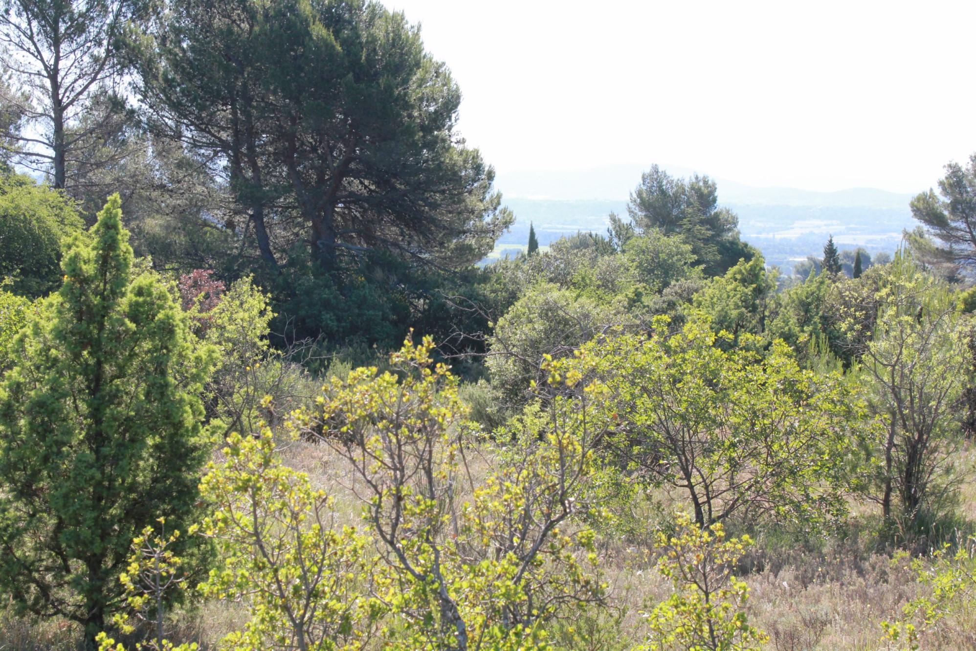 Beau terrain constructible à la vente en Luberon