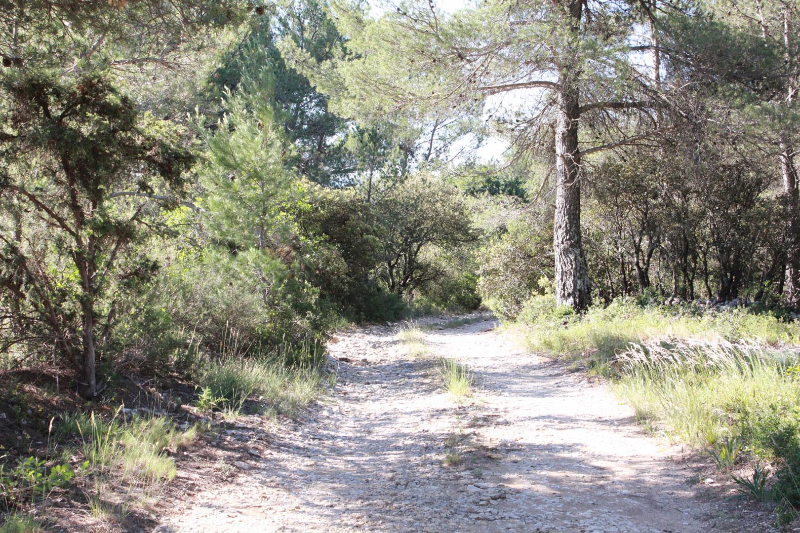 Très beau terrain constructible sur la commune de Joucas , à vendre