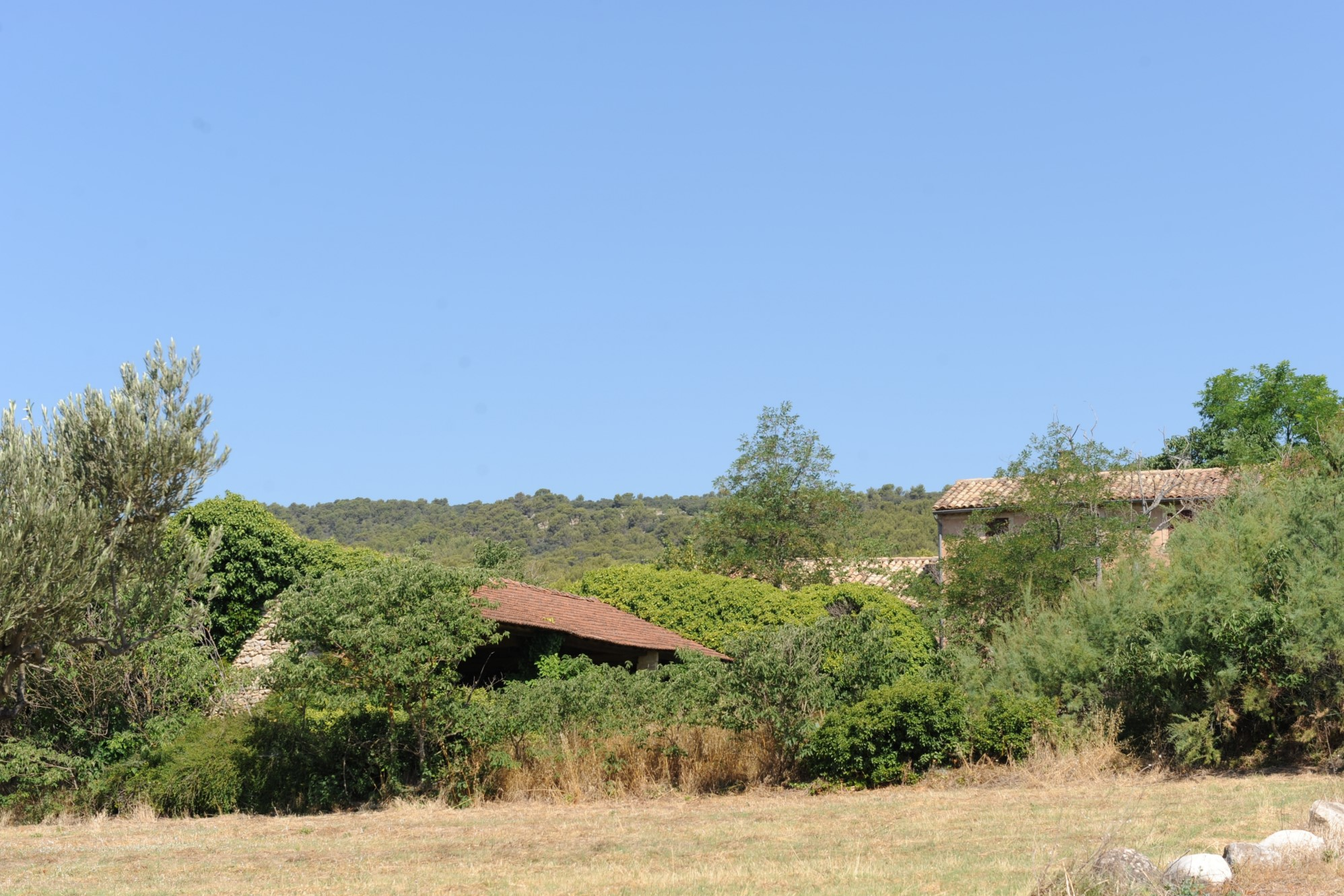Ferme à rénover en Provence