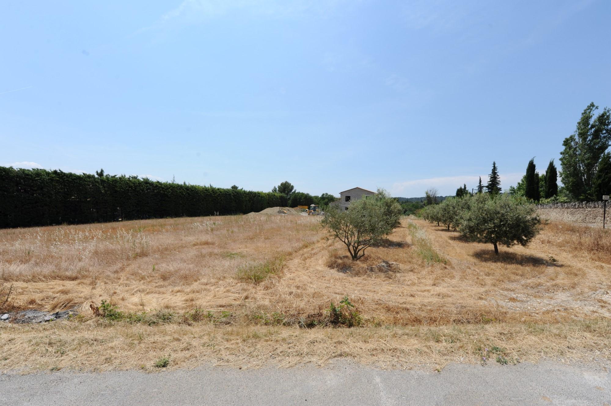Terrain à bâtir à vendre en Luberon par ROSIER