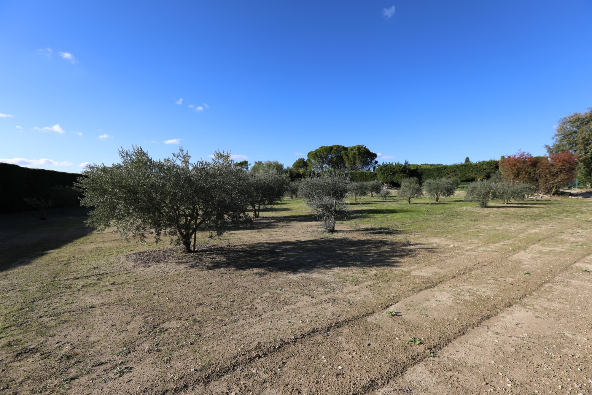 Terrain constructible avec vue à vendre dans le Luberon