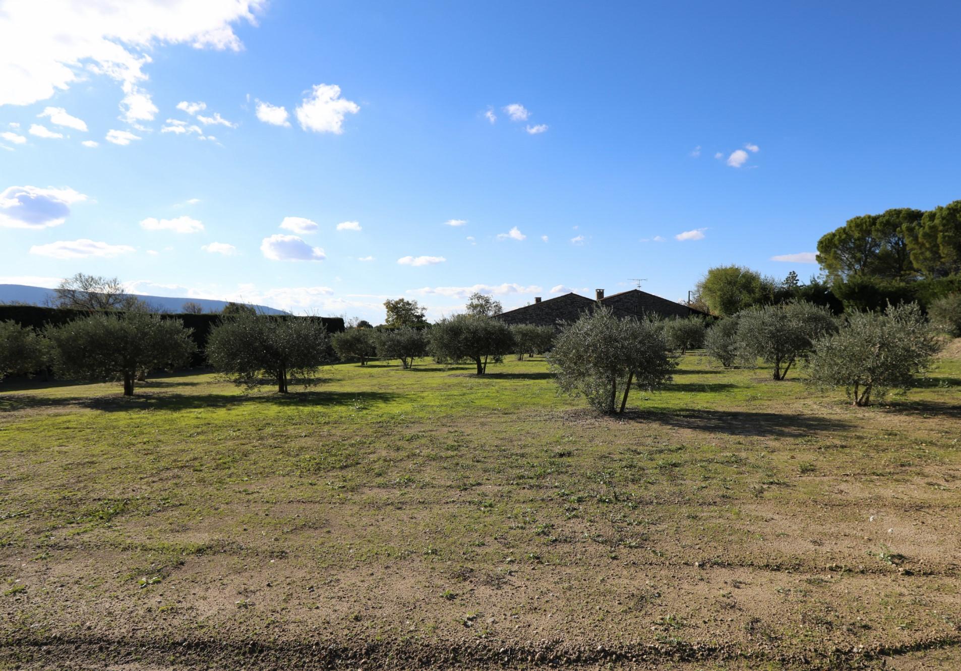 Terrain constructible à vendre dans le Luberon