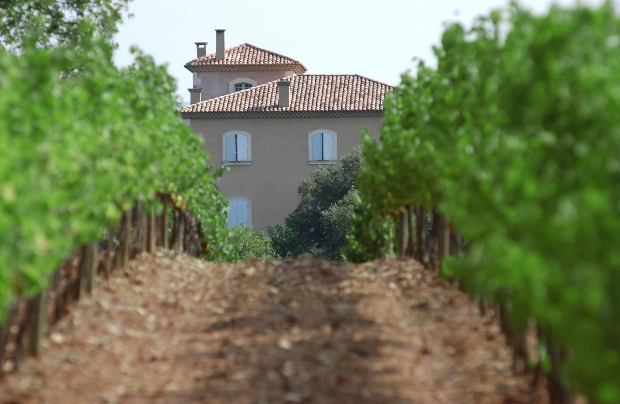 Propriété viticole au cœur de la Provence