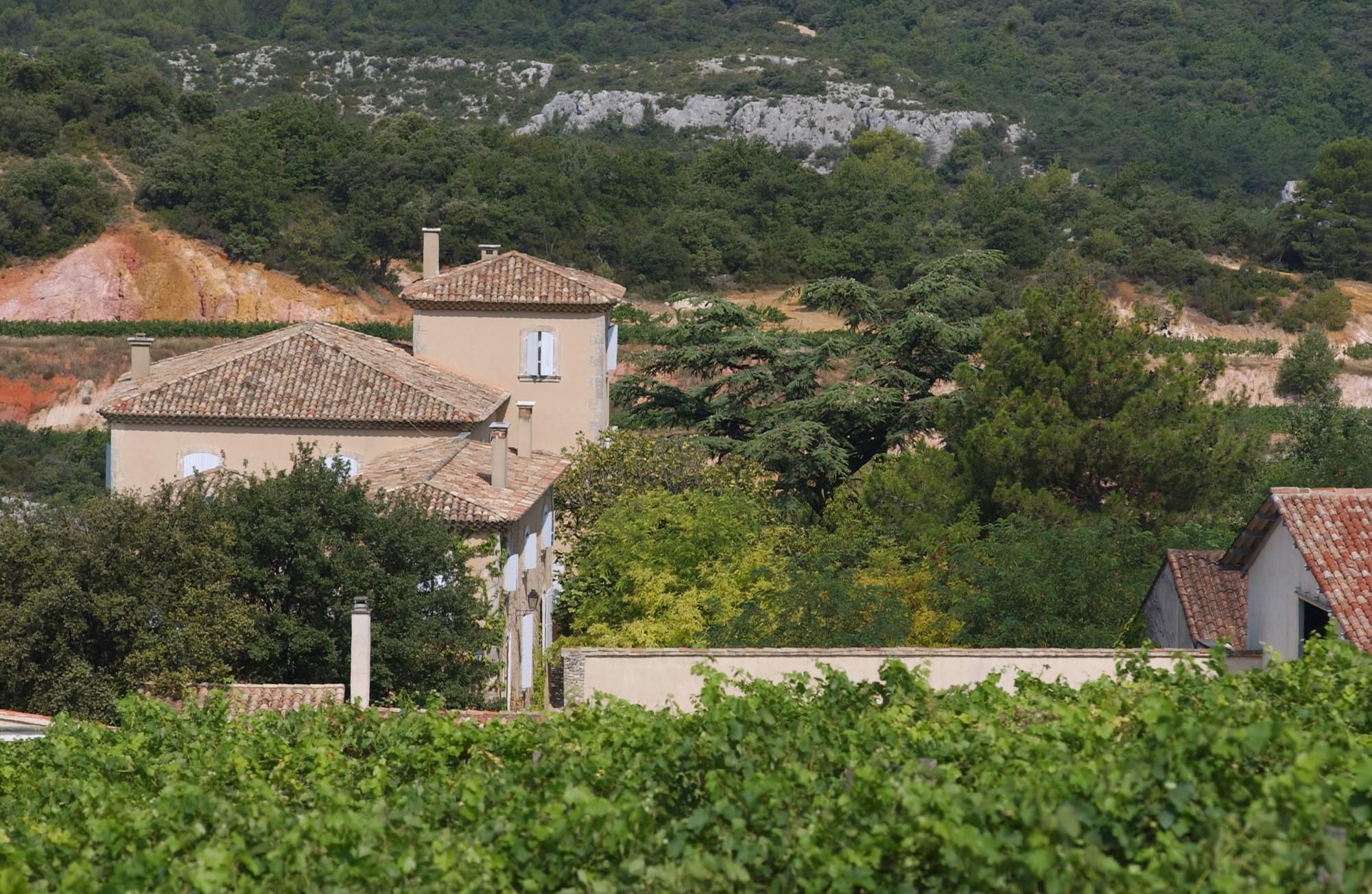 Propriété viticole en Luberon