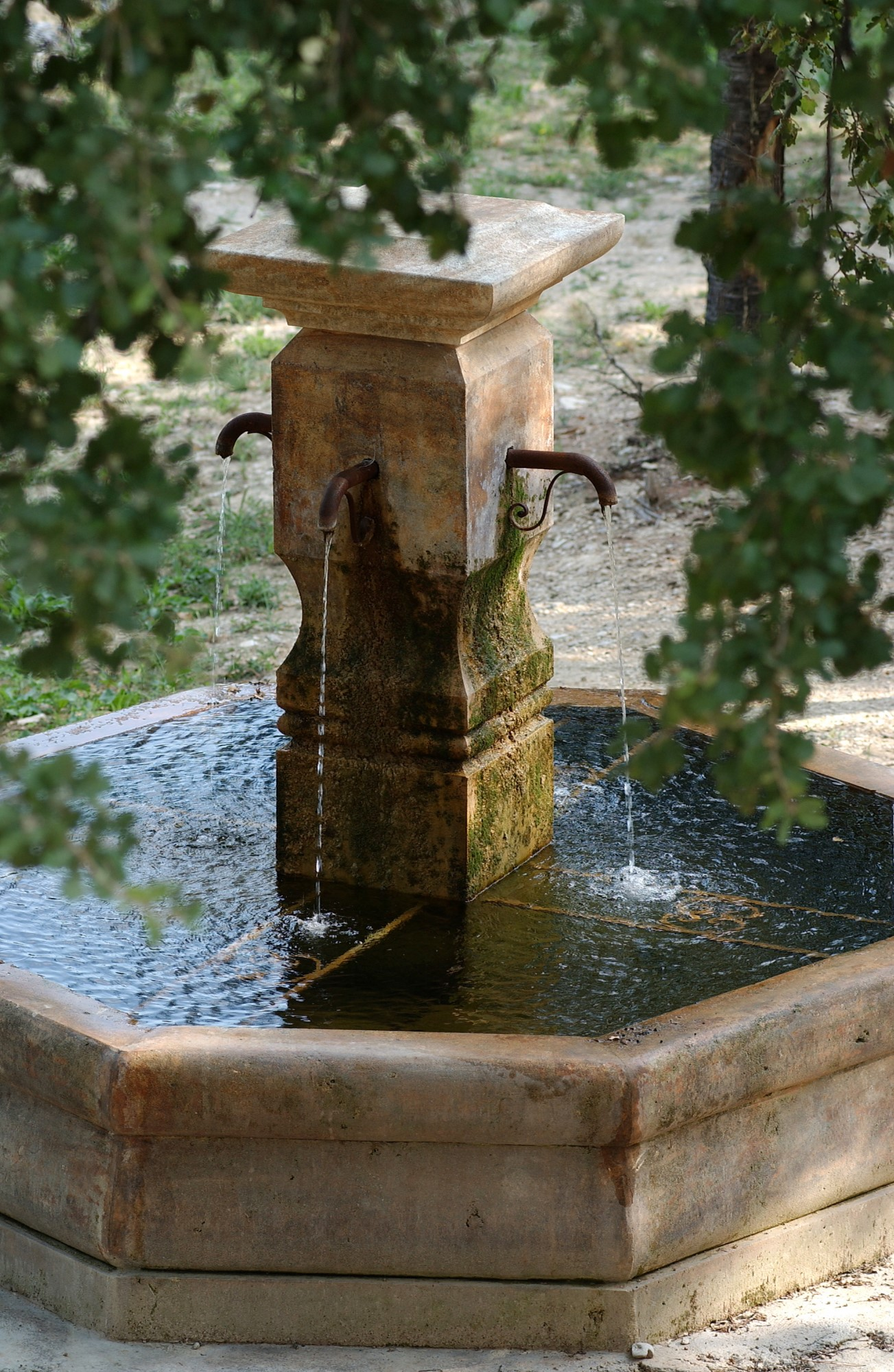 A vendre en Luberon, belle propriété viticole de 100 hectares