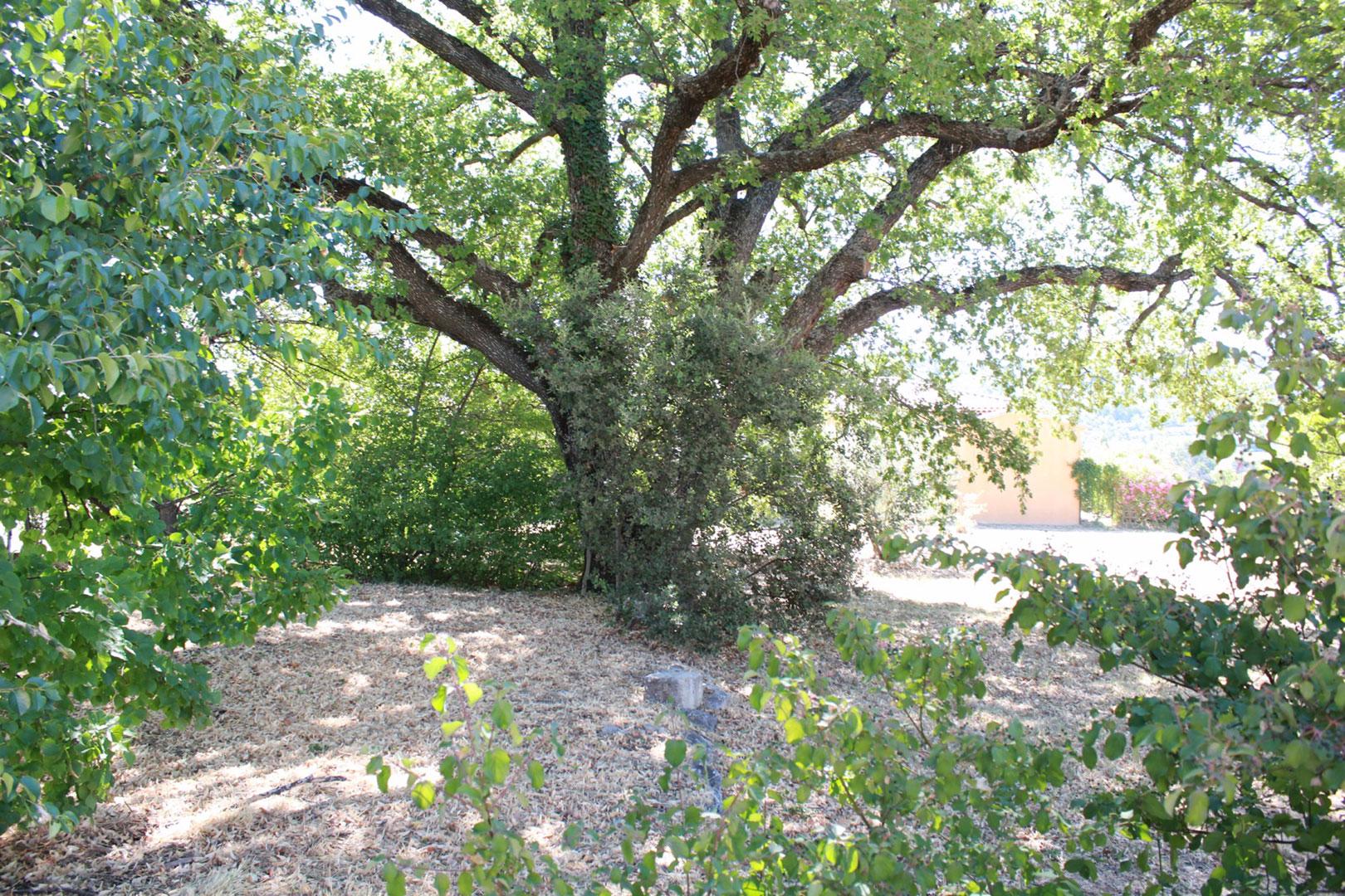 Terrain constructible à vendre dans un très beau hameau situé au cœur du Luberon