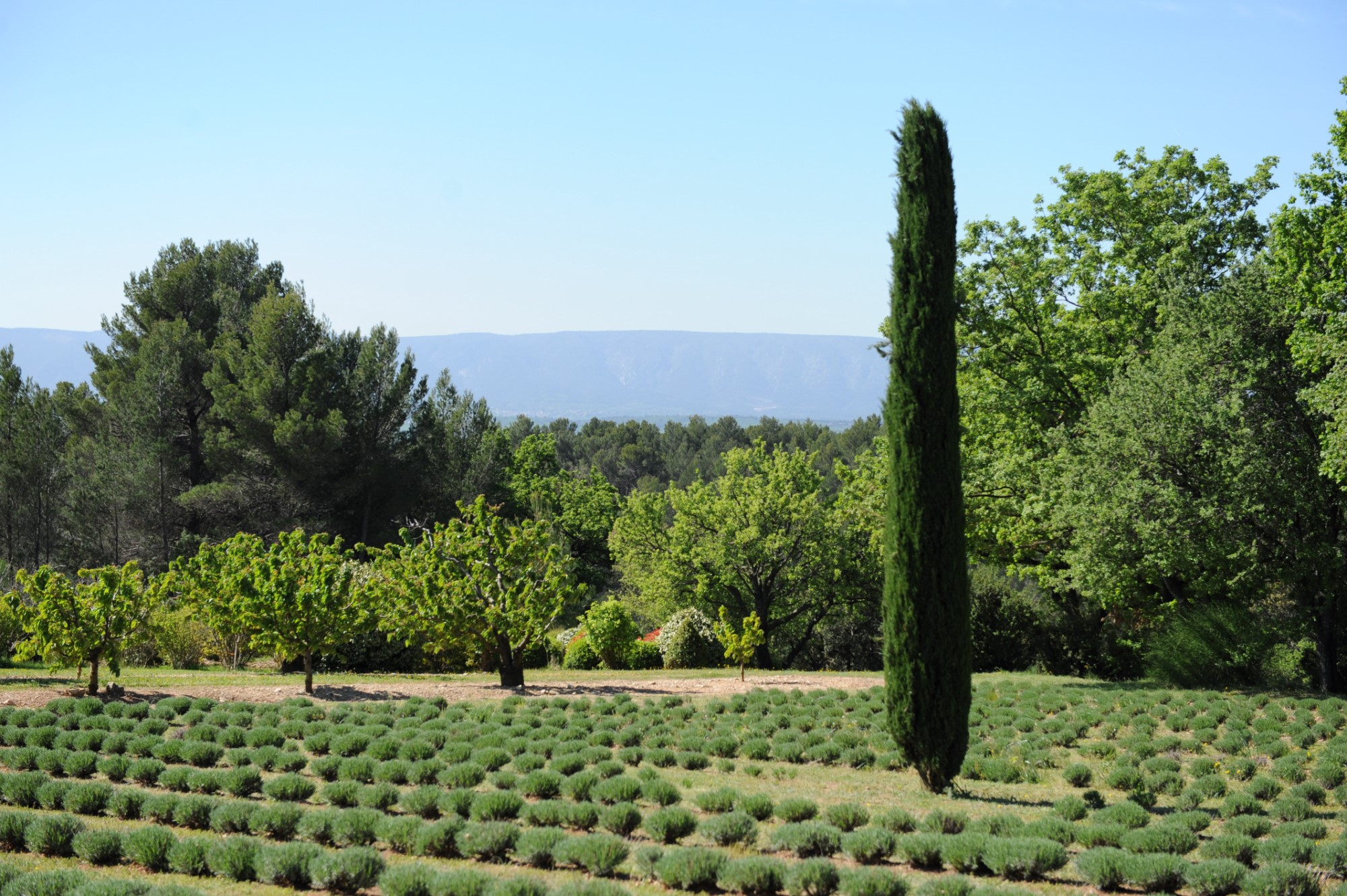 Superb property on 9.5 hectares, with views, for sale in the Luberon