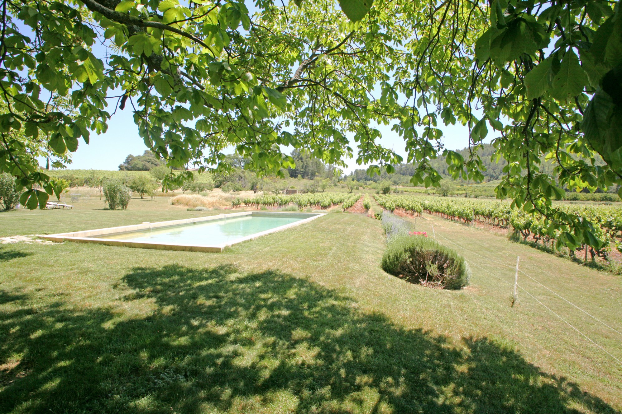 Bastide avec piscine en Provence