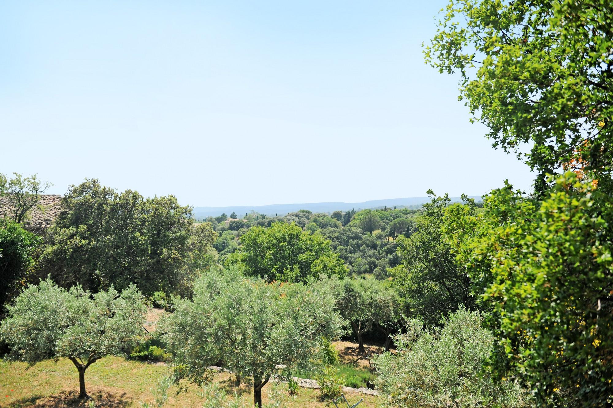 La vue par dessus les oliviers, Gordes.