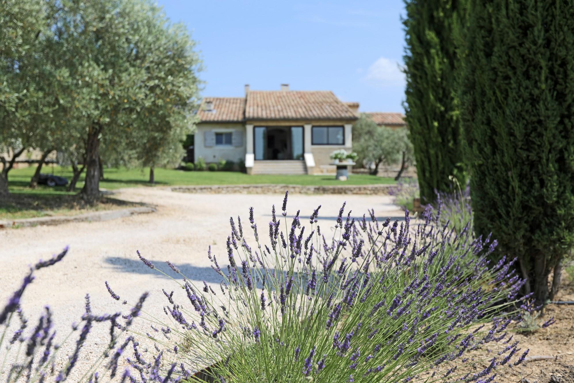 Jardin paysager et essences Provençales