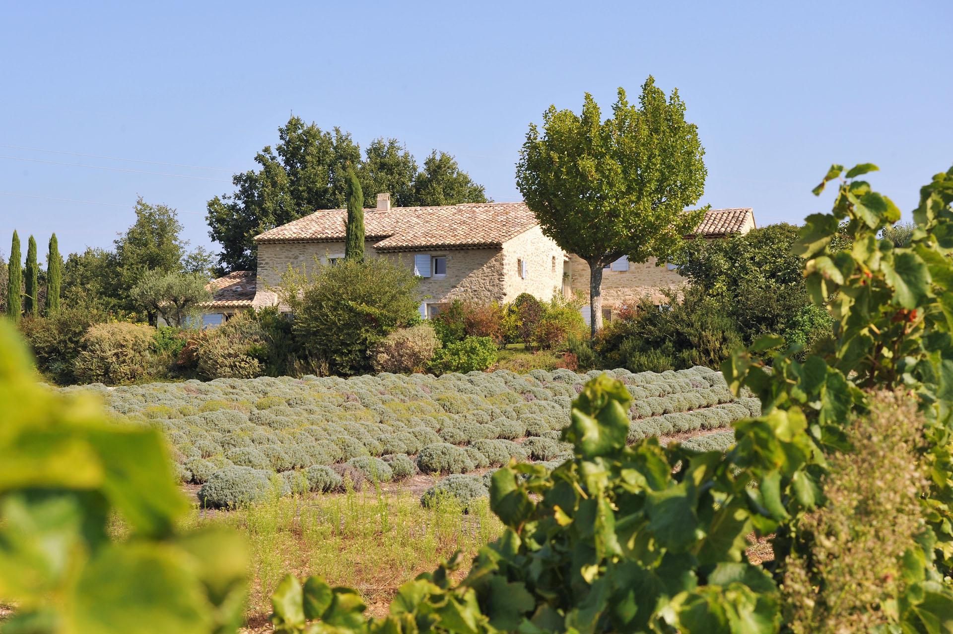 Luberon,  à proximité d'Oppède,  authentique mas provençal du XVIIIème rénové avec soin, pour des vacances réussies au soleil de la Provence