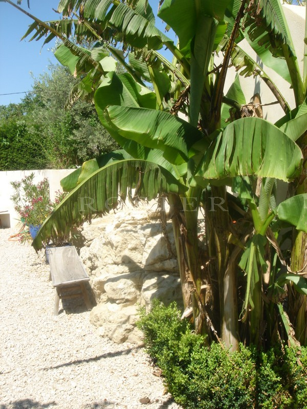 Location locations saisonnieres charmant mazet enti rement for Location gites luberon avec piscine